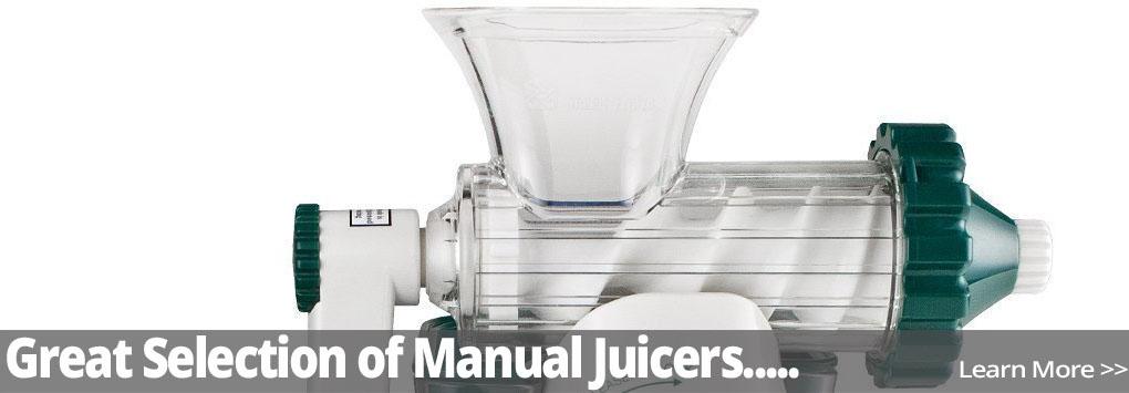 bullet blaster juicer recipes